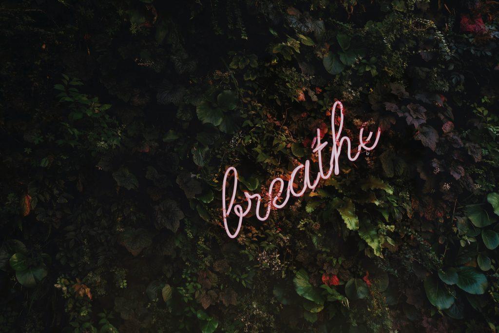 breathe in lights